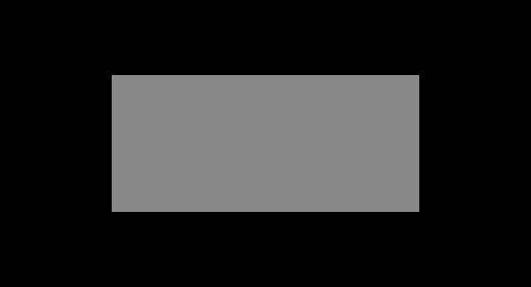 gammon-india